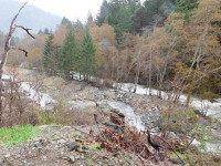 New Supply Creek Diversions have been made and this work will increase the amount of high quality in-stream habitat available for salmon throughout various stream flow conditions./Photo by Keterah Lipscomb, Two Rivers Tribune.