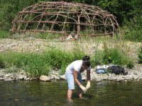 Tonya Lindsey, an environmental assistant from the Quartz Valley Indian Reservation, takes water samples from lower Shackleford Creek as part of the Tribe's ongoing study of the effects of cattle grazing allotments in the headwaters. A sweat lodge shell is in the background. /Photo courtesy of Quartz Valley Indian Reservation.