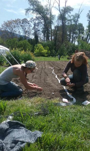 Andrea Jonnotta and Meredith Nesbitt plant a freshly tilled bed with beet seeds at the Warrior Institute's garden in Hostler Field./Photo by Allie Hostler.